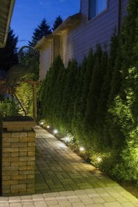 Great entry landscaping with lights