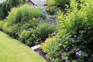 5 Landscaping Services